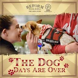You can now book out Reform Social & Grill's lawn for you and your pet
